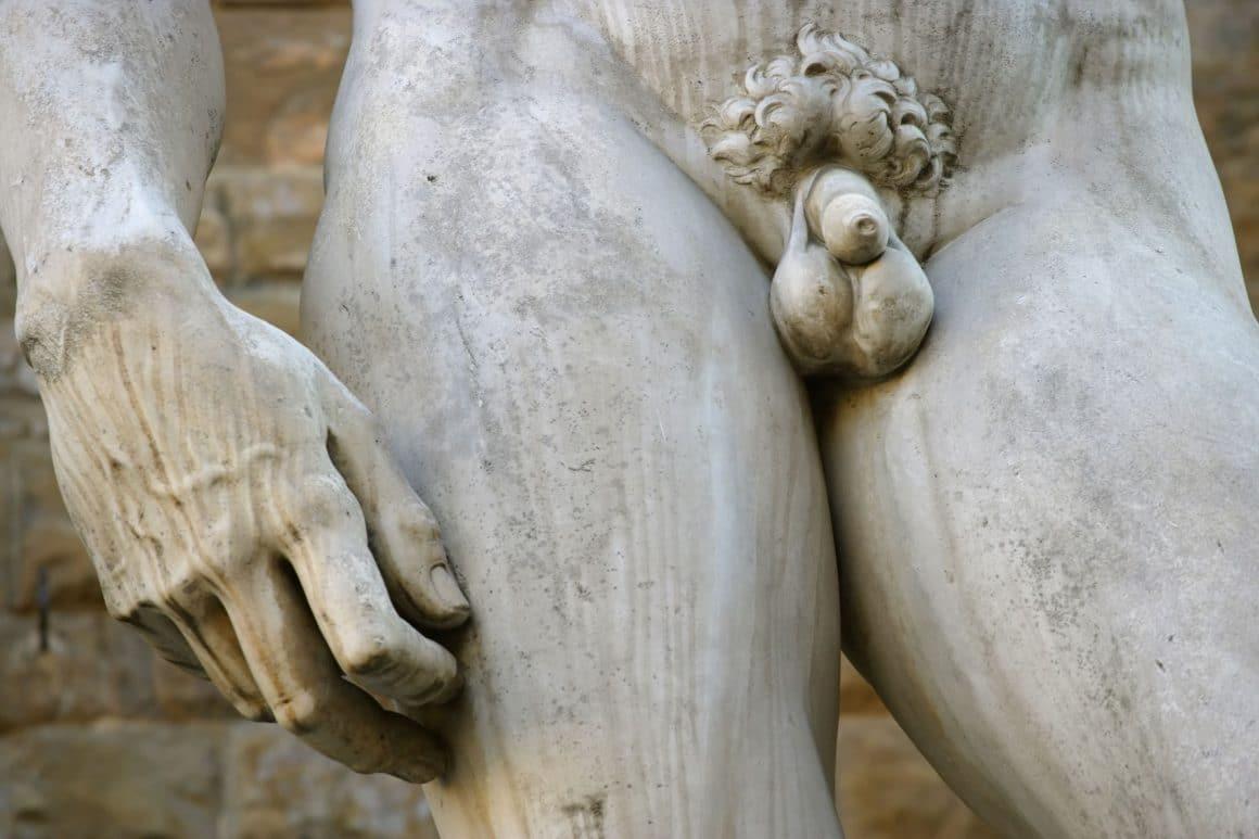 taille du pénis moyenne en france